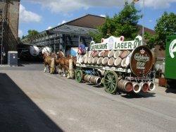 Horses hauling beer